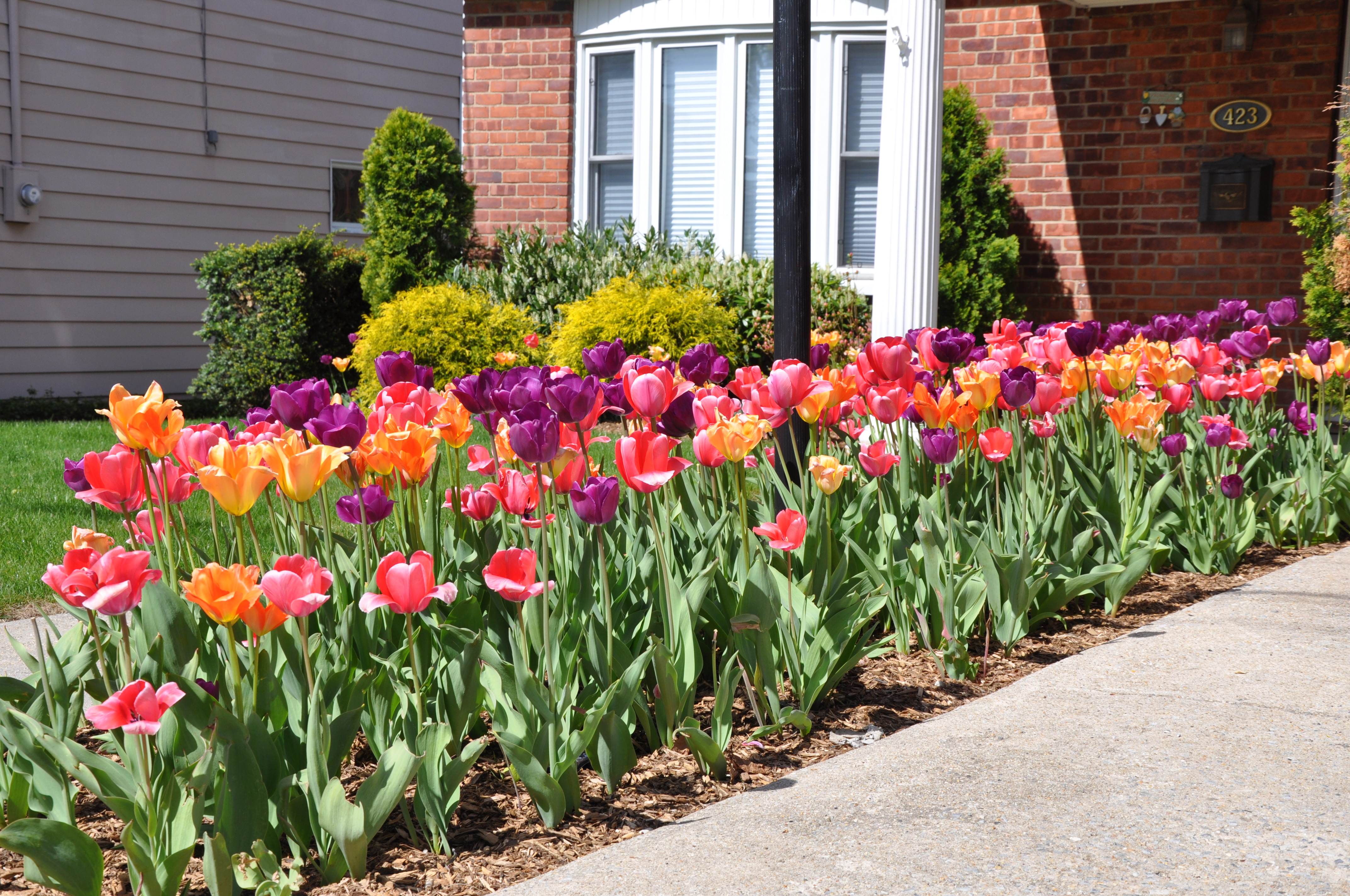 nice spring landscaping Part - 4: nice spring landscaping nice ideas