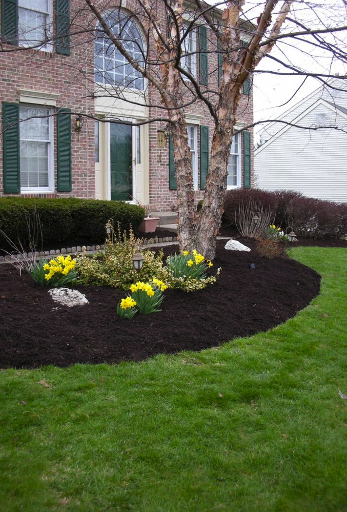 Mulch More Than Just Pretty Emil Yedowitz Landscaping And