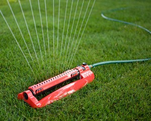 The Importance of Deep Watering for Lawns