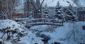WinterGardenCleanupFlickrliketearsintherain