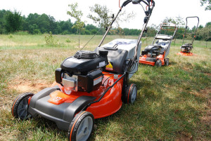 Do a spring lawn mower tune up every year