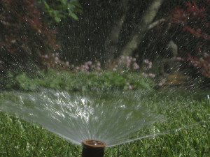 Overwatering A Lawn is Possible