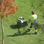 It's time to work on your Lawn !