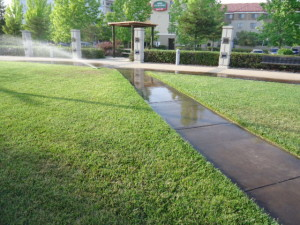 When doing a fall sprinkler check, make sure the sidewalks aren't getting watered too.
