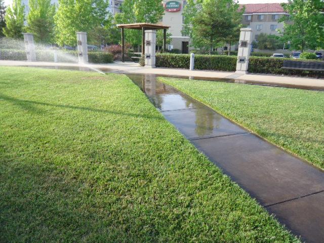 Do a Fall Sprinkler System Check