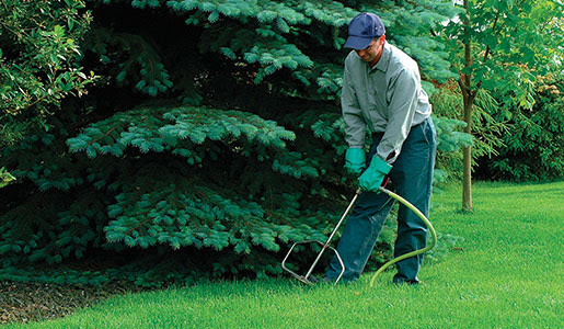 Fertilizing Lawns, Trees and Shrubs