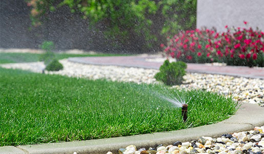 End Watering Woes… Automatically!